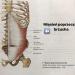 Niespecyficzny ból odcinka lędźwiowego arola mięśnia poprzecznego brzucha